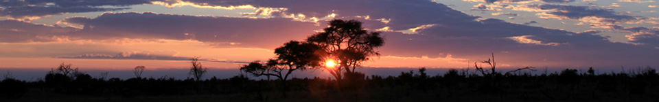 Sunset in the Hwange National Park, Zimbabwe